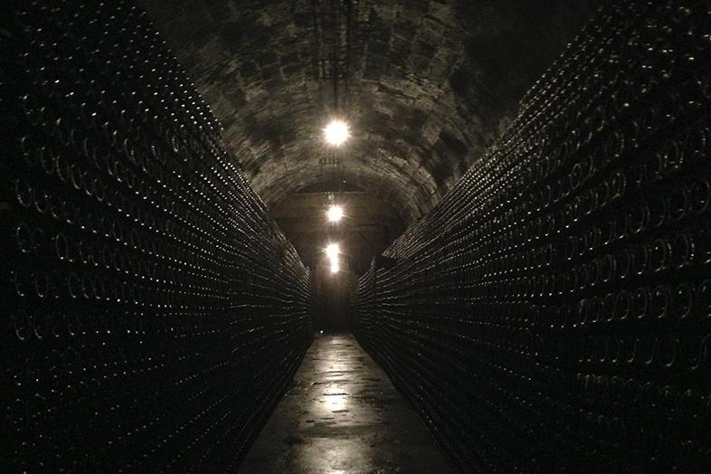 Duero Portugués. La historia entre viñedos.