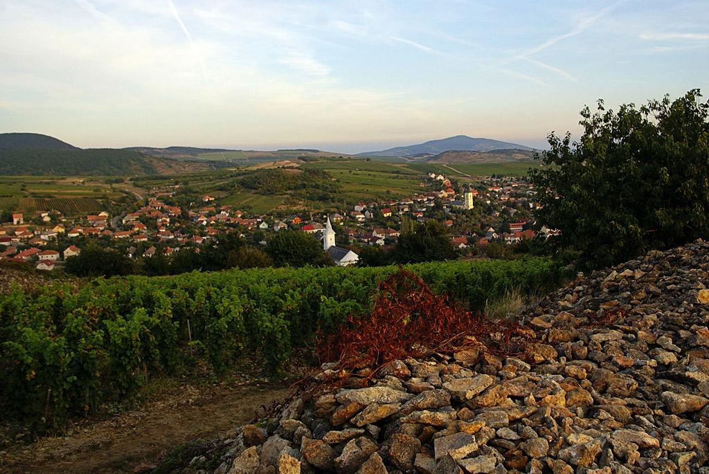 Hungría: Budapest y la región de Tokaj